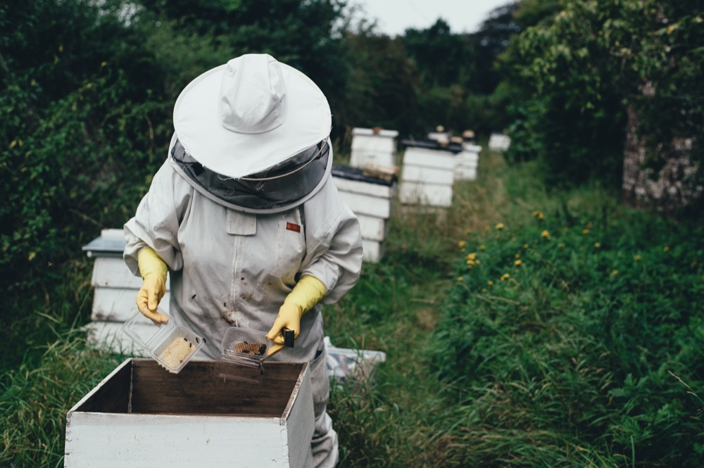 The Invoxia GPS Tracker, perfect for countering beehive theft